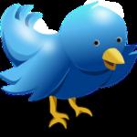 turundamine twitteris